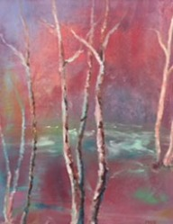 price-birch-trees